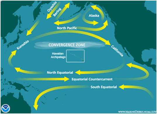 North Pacific Gyre
