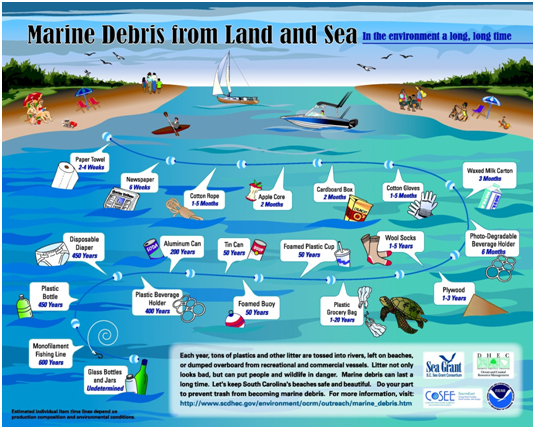 Marine Debris from Land to Sea